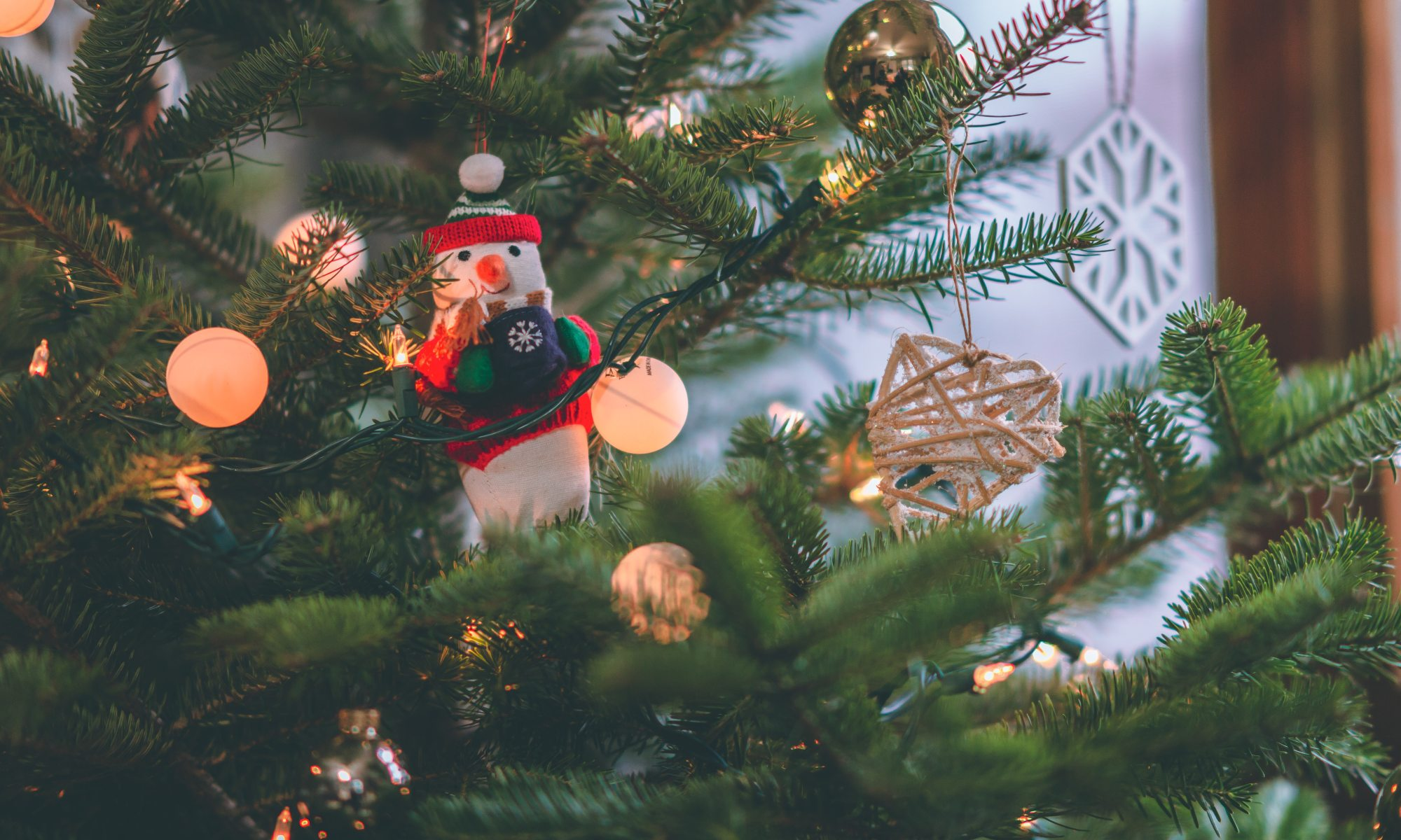Close-up of a Christmas ornament